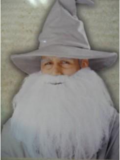 Barbe blanche longue