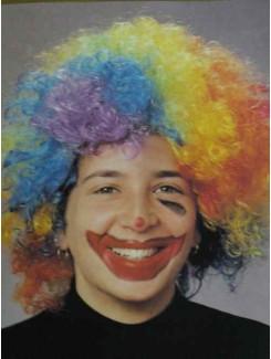 Perruque Clown multicolore couetté